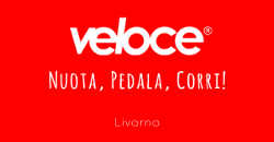 VELOCE Store